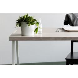 biurko fjord - dąb bielony