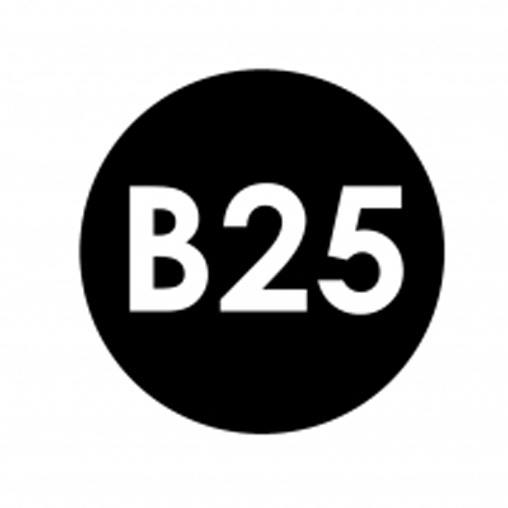 Projekt B25